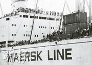 Vietnamese refugees came to Hong Kong in a Danish cargo ship.