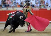 Spanish bullfighter performs a pass on a bull on September 25, 2011, in Barcelona's Monumental arena. AFP PHOTO.