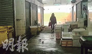 領展以高價出售新田圍街市後,新業主大減清潔人手,令鼠患嚴重,老鼠不時跟途人一起於同一條路上行走。(地區人士提供短片截圖)