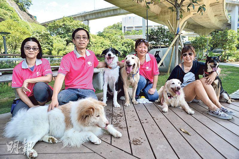 Founder (second from left), volunteers and dogs from the Hong Kong Institute of Animal Assisted Intervention. (file photo)