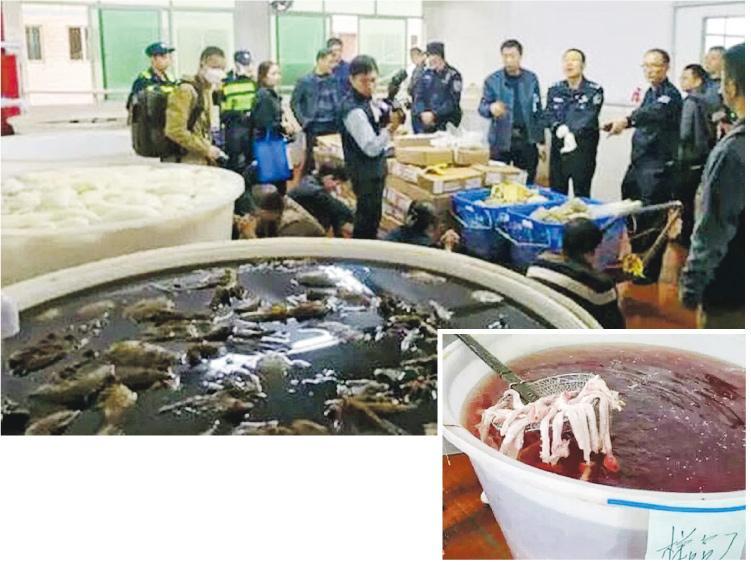 深圳市市場稽查局較早前與公安聯合行動,在地下工場及多處街市起出38噸非法生產的牛百葉(上圖),這些產品被用氫氧化鈉和雙氧水漂白(右圖)。(網上圖片)