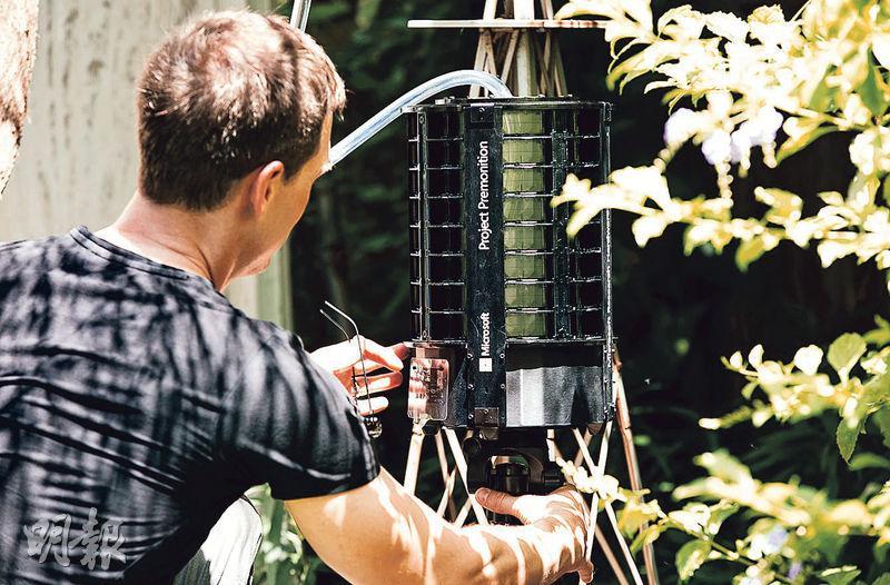 微軟人員在得州設置可辨識昆蟲種類、專門捕捉蚊子的智能捕蚊器。(網上圖片)