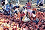 昨有羅興亞兒童在孟加拉境內的難民營中搬磚頭。(路透社)