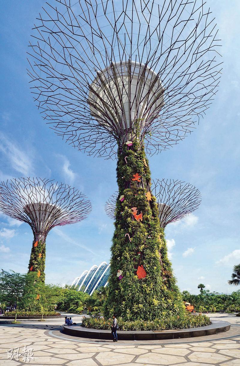 Nick曾到新加坡濱海灣花園(圖)實地考察,園內有綠化建築物「擎天樹」,垂直部分種有各類植物。