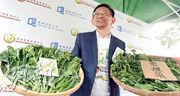 浸會大學香港有機資源中心總監黃煥忠(圖)稱,部分街市菜檔聲稱售賣有機菜,但未能出示認證資料。他說,若菜檔售賣的有機菜來自該中心認證的農場,一般會出示有中心圖案(左前)的認證資料,呼籲市民小心選購。(劉焌陶攝)