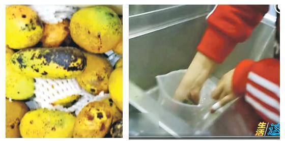 影片顯示,有水果已發黑(左圖),但飲品店的店員仍採用,更直接用手擠壓茶包裏的汁液,連她自己都直呼惡心,但仍將茶包裏的汁液擠到杯子裏備用(右圖)。(網上圖片)