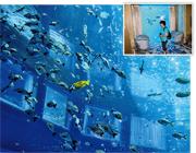 今年4月開業的超五星級海南亞特蘭蒂斯酒店,擁有4間海底客房,透過房間玻璃,可以躺在牀上或浴缸中,如同潛入海洋深處,觀賞外面各式魚類。小圖為房間內部。(李泉攝)