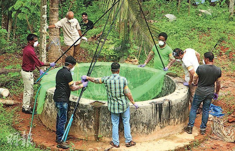 印度南部爆發尼帕病毒疫情,由於果蝠是病毒宿主,當地官員周日檢查一個井捉蝙蝠。(法新社)