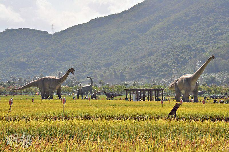 位於海南三亞的水稻公園的稻田邊和林間,設有1比1恐龍模型,在夜間更會亮燈,晚上還有大型《田野狂歡》山水實景表演。(李泉攝)