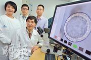 港大微生物學系講座教授袁國勇(前)與團隊用了約兩年時間,成功建立成熟的呼吸道類器官,模擬人類呼吸道「上皮組織」,可預測已知及新發病毒對人體的感染能力。(鍾林枝攝)