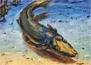 圖為畫家筆下的Brindabellaspis外形。