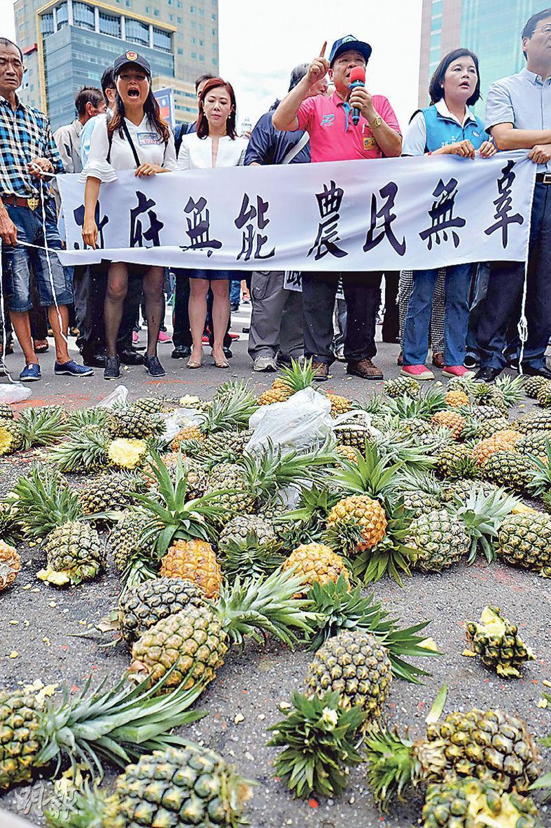 台灣農民昨日舉起「政府無能 農民無辜」橫額,其間砸碎菠蘿表達不滿。(法新社)