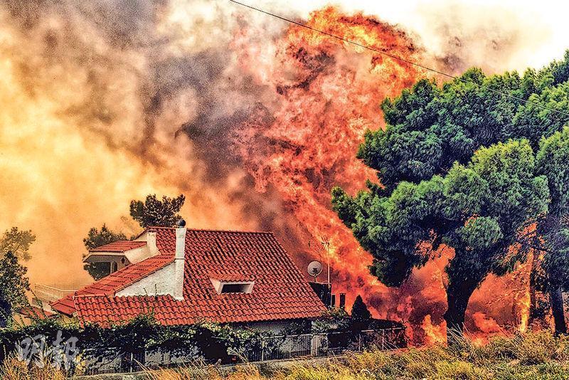 雅典附近的基內塔周一有房屋受迫近的山火威脅。(法新社)