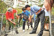 澳門民政總署動物檢疫監管處處長徐裕輝(右一)展示於上周五絕育的格力犬,他指犬隻傷口癒合情况良好。(蘇智鑫攝)