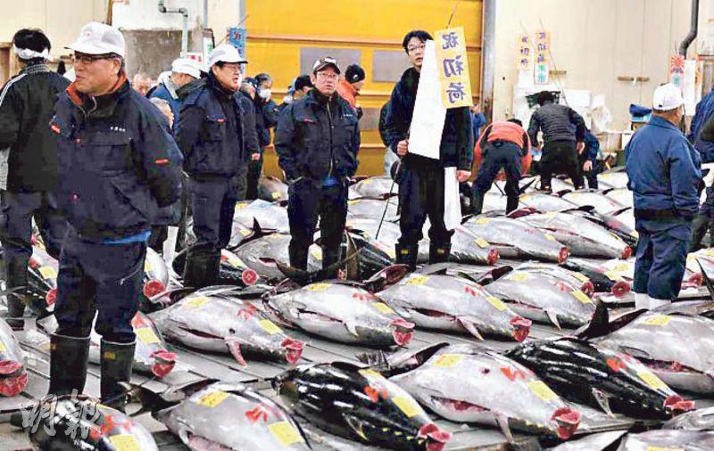 日本築地魚市場因場內冷凍系統老舊,在熱浪下惹起海產保鮮疑慮。(法新社)