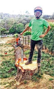 3年前到澳洲墨爾本工作假期,令Jason(圖)體會到當地人愛惜樹木,每次修剪樹木前,攀樹師都會與樹藝師和樹木擁有人開會商量,絕不會輕易移除樹木。(受訪者提供)
