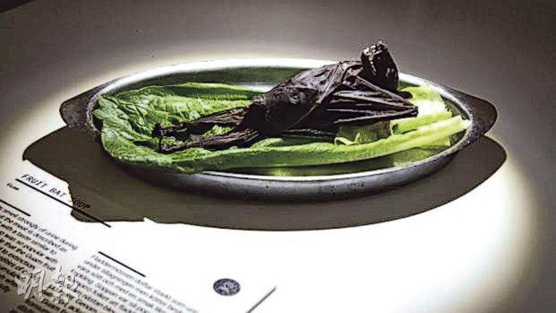 瑞典「惡心食物博物館」展出的食物包括果蝠。(網上圖片)