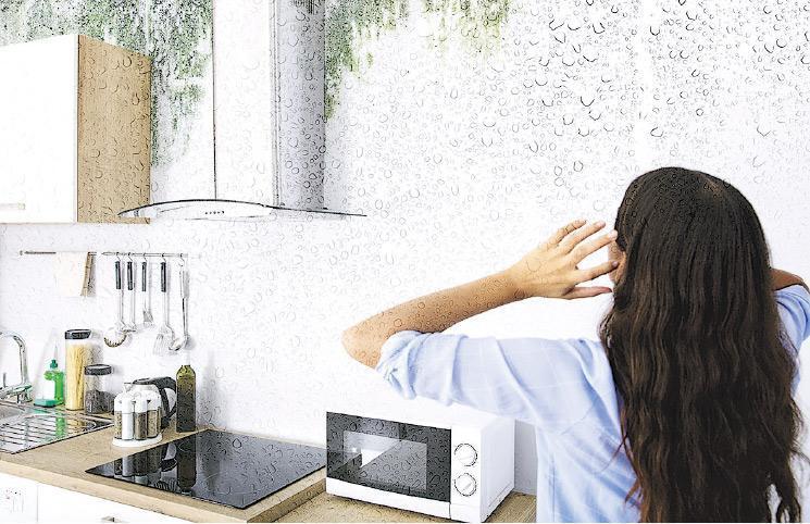 踏入初春,香港濕度會提高,家中牆壁也會變濕呢!
