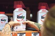 孟山都出產的Roundup除草劑被指致癌,面臨多宗索償官司。(法新社)