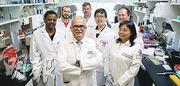 美國天普大學及內布拉斯加大學的專家合作試驗,以「基因剪刀」技術配合抗反轉錄病毒藥物,完全去除實驗鼠體內的HIV病毒。(網上圖片)