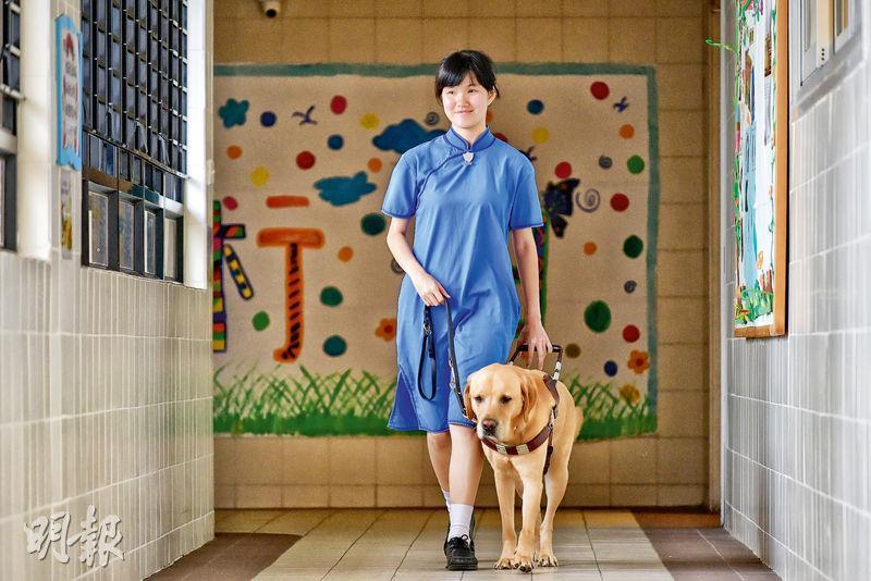 視障學生蔡樂詩說在應付文憑試時,導盲犬Bene一直伴隨左右,除令她順利到達試場,溫習疲累時更會與牠「聊天」,「我們是『Buddy(伙伴)』的關係」。(鍾林枝攝)