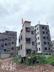 冼村有1900多座出租屋,在經歷多年的拆遷後,還剩下約200座成為「釘子戶」,每座樓頂都被插上紅旗,據村民表示,這是屋主不願清拆,以示抗爭決心。(明報記者攝)
