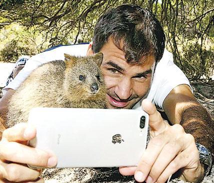 網球明星費達拿與一隻短尾矮袋鼠自拍。(Getty Images)