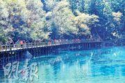 2017年在地震中遭受重創的四川九寨溝景區昨日試開園,遊客在五彩池景點參觀。(中新社)