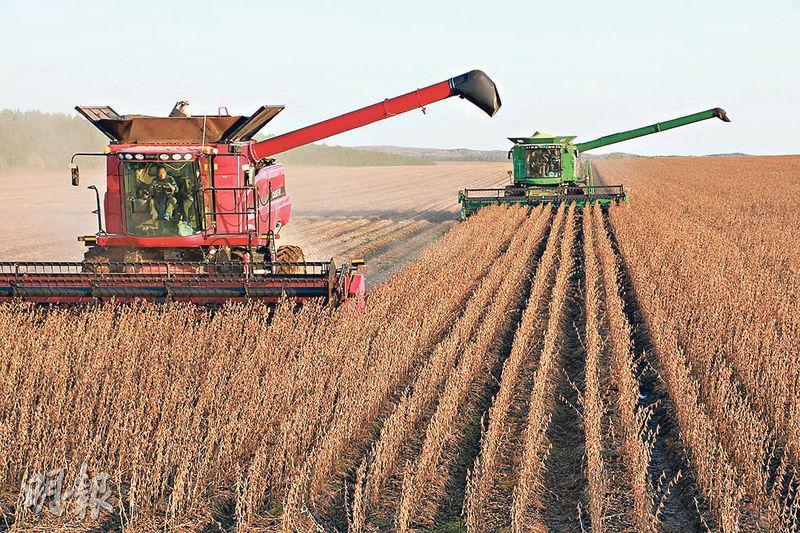 美國將農產品採購視為中美談判關鍵。中國外交部昨表示,中企今年以來已自美國採購大豆2000萬噸。圖為去年農民在中國東北黑龍江省的一個農場裏收割大豆。(資料圖片)