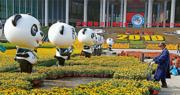 第二屆中國國際進口博覽會將於11月5日在上海國家會展中心開幕,眾多施工人員和義工正緊鑼密鼓佈展。 圖為工作人員昨日在國家會展中心南廣場上佈置鮮花裝飾。(中新社)