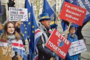 英國倫敦周三有反脫歐示威者到唐寧街外抗議,部分人舉起的示威牌指英國與歐盟在一起會更好。(法新社)