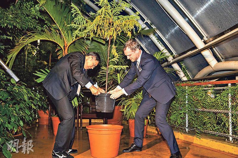台北市長柯文哲(左)和布拉格市長賀瑞普(右)周一簽下締結姊妹市協議後,一起種下台灣杉小樹苗,象徵雙方情誼久而彌堅。(台北市政府)