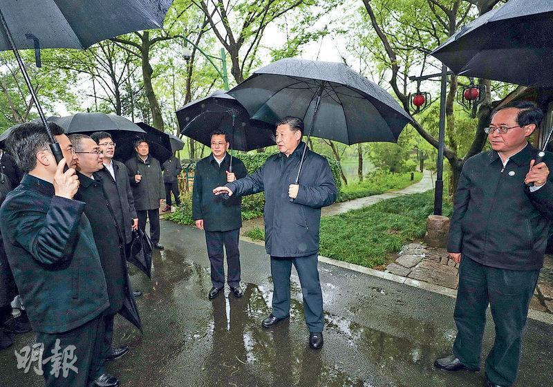 國家主席習近平前日(中)視察浙江期間參觀西溪國家濕地公園,調研期間重提「綠水青山就是金山銀山」的發展理念。(新華社)
