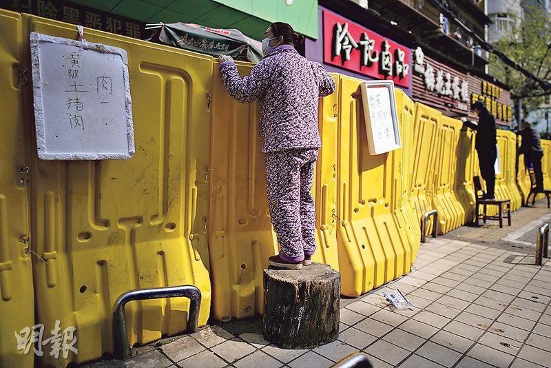 湖北多地近日出現搶購糧油現象,各地政府周二呼籲市民不要再盲目跟風。圖為昨日武漢有市民站在椅子、木墩等物越過隔離牆,購買蔬菜等糧食。(路透社)