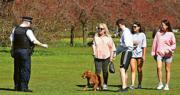 上周六不少倫敦居民趁好天氣到格林威治公園享受日光,有警察到場勸喻市民遵守政府的社交距離守則。(路透社)