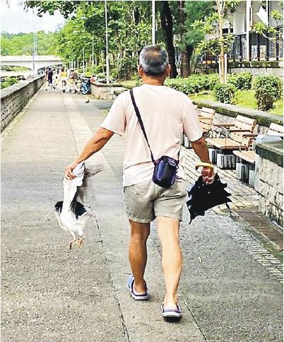 區議員連桷璋稱,其同事昨午在林村河邊見到中年漢捉住一隻鷺鳥的雙翼,走了一段路才放低。(連桷璋提供)
