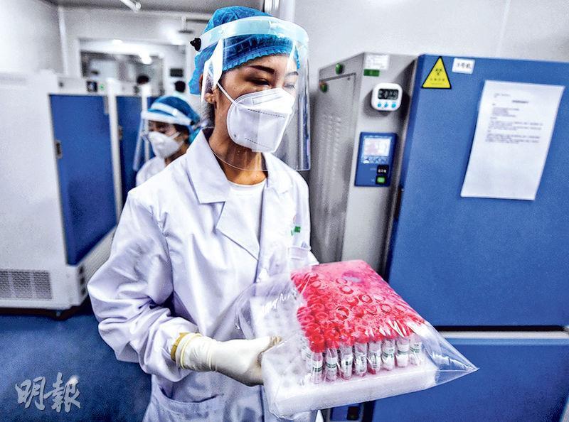 新發地疫情爆發後,北京在480個場所設有2422個採集點,每日核酸檢測能力增至30萬份以上。圖為一名工作人員25日在北京一間醫學測驗機構實驗室準備對樣本進行檢測。(新華社)