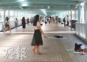 部分外傭昨午在旺角行人天橋的道旁鋪上蓆,閒坐或躺臥休息,有外傭赤腳在天橋行走。(李紹昌攝)