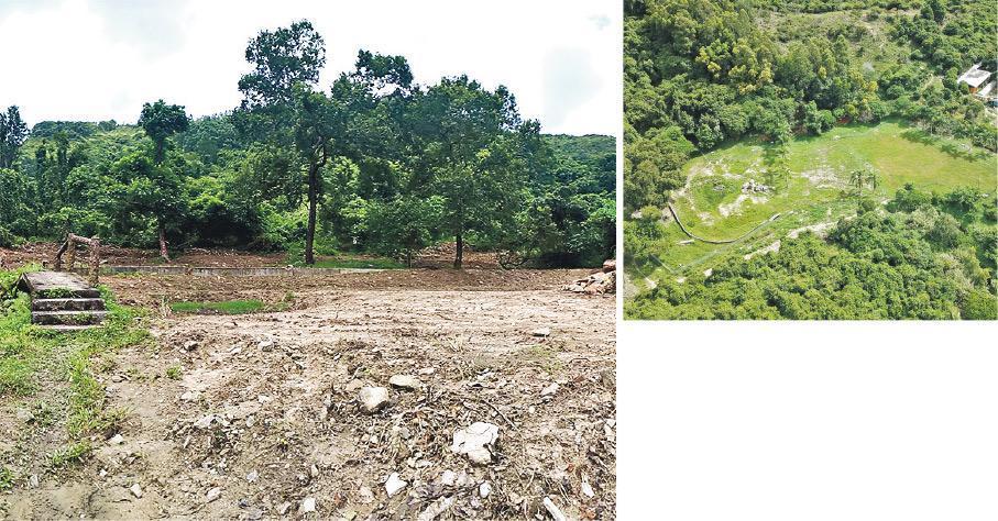長春社去年8月到大欖郊野公園旁邊的濕地觀察(左圖),發現大量植被遭移除,影響範圍包括貼近大欖郊野公園的林地。擬建骨灰龕的私人農地原是淡水濕地(右圖),攝於今年8月11日。(長春社提供)