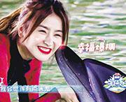 內地女星金子涵在東方衛視《完美的夏天》的節目中塗口紅與海豚親吻,遭中國鯨類保護聯盟點名批評,指出化妝品會對海豚造成傷害。(影片截圖)