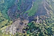山火過後,上水蕉徑彭屋對開一大片山丘的植被燃燒殆盡,土壤一片焦黑,與未有被山火波及的範圍形成強烈對比。(鍾林枝攝)