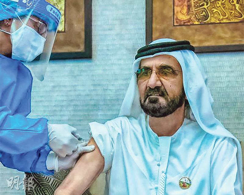 國藥集團中國生物研發的兩款新冠滅活疫苗,目前正在阿聯酋、阿根廷等國進行第三期臨牀試驗,據報未發現嚴重不良反應。圖為本月3日,阿聯酋副總統兼總理阿勒馬克圖姆正接種國藥集團研發的新冠病毒疫苗。(法新社)