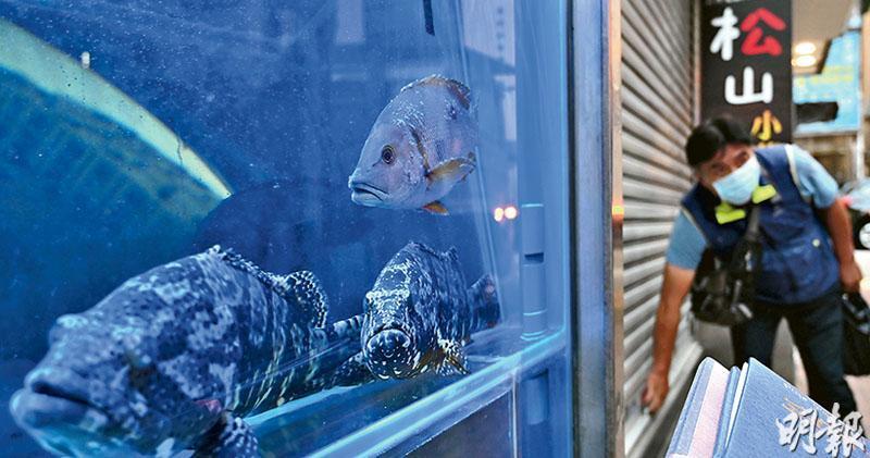尖沙嘴松山海鮮鍋有食客及員工感染新冠病毒,衛生署表示11月15日或之後到訪的人,須接受強制檢測。(賴俊傑攝)