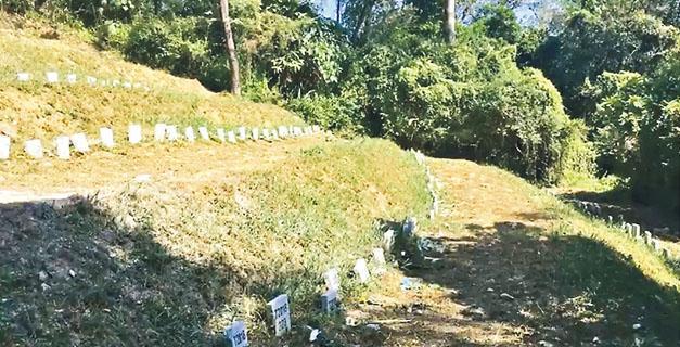 區議員陳梓維噚日又每月一度喺沙嶺公墓直播拜祭,引起部分同事不滿。(陳梓維fb直播截圖)