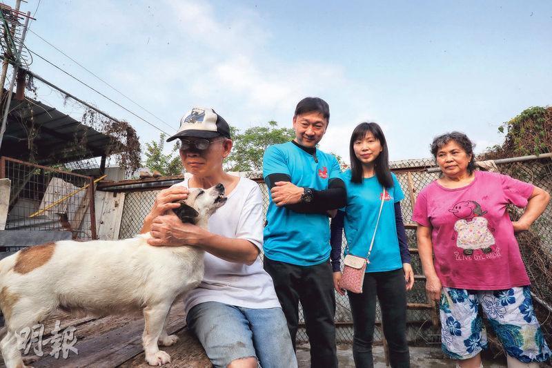 楊氏老夫婦(左一及右一)2002年託友人在元朗找了一片農地收容流浪狗,前後花了20多萬元。夫婦的儲蓄亦幾乎用光,幸得有心義工幫助,夫婦的狗場才得以延續下去。