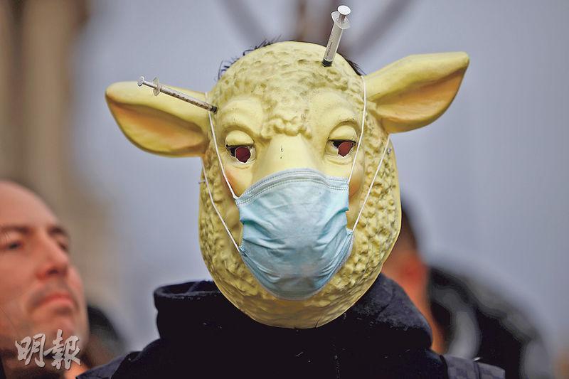 英國上周展開新冠疫苗的接種工程,但當地仍有不少人對疫苗抱懷疑態度。有反疫苗示威者周一在倫敦國會廣場扮成戴口罩綿羊示威。(路透社)