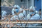 正於武漢考察的世衛專家組昨日上午到訪湖北省動物疫病預防控制中心,其間均穿上全套保護衣。(法新社)