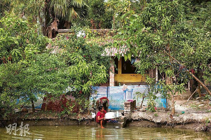 印度有新興政黨提倡讓家庭主婦就家務勞動獲取應得薪金,引起討論。圖為印度蘇達班一名女性在家門外的池塘清洗器皿。(路透社)