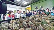 台灣行政院長蘇貞昌(左)昨日到屏東縣高樹鄉綠地合作社表示政府一定不會讓農民吃虧。(中央社)