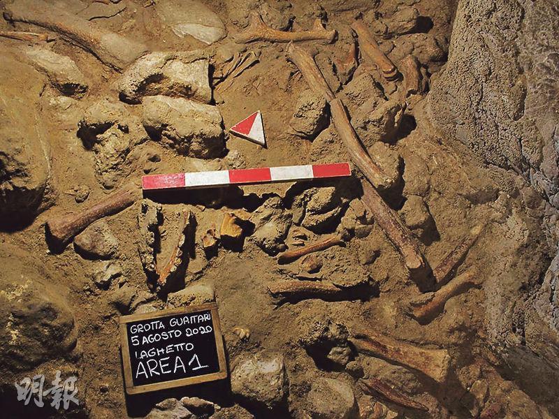 意大利宣布,在瓜泰里洞考古挖掘出9具尼安德特人的遺骸化石。(路透社)